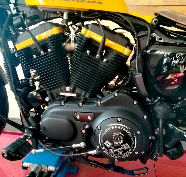 pers-motori (3)